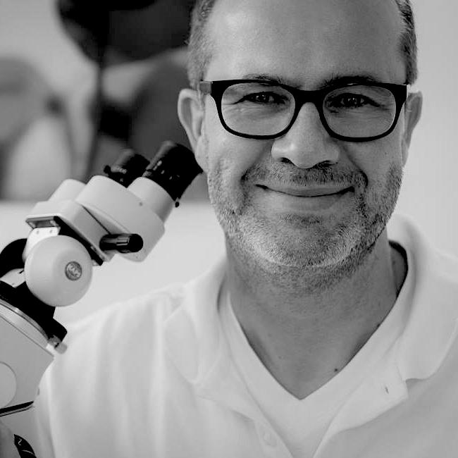Dr. med. dent. Michael-Kurt Prüfert